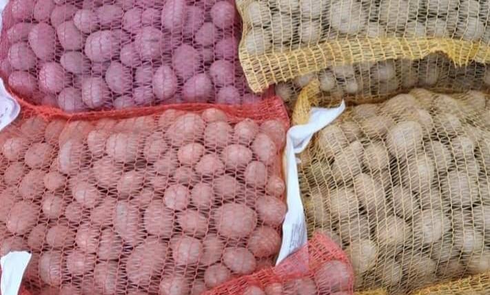 Doskladnění brambor